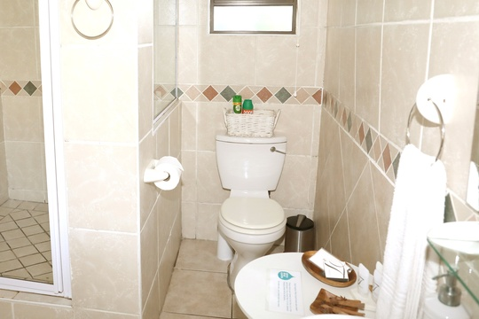 Standard Double Room #4 bathroom